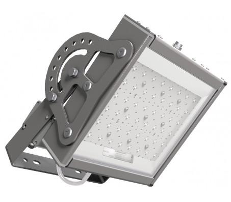 Светодиодный светильник EL-ДБУ-12-055-0161-65Х